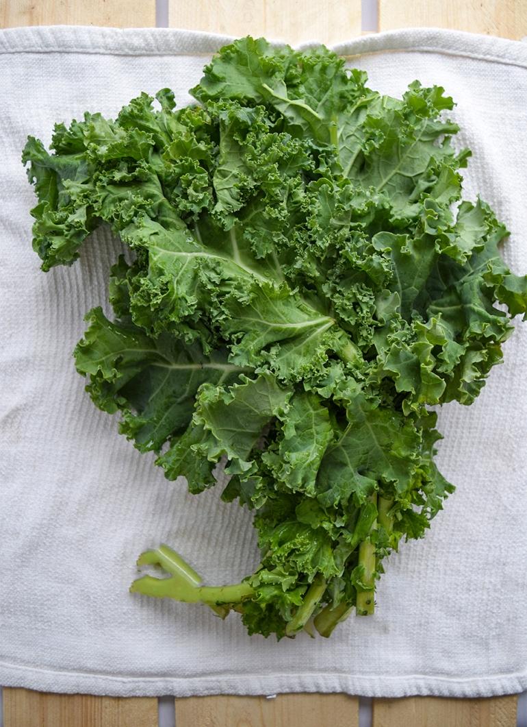 towel lettuce.jpg